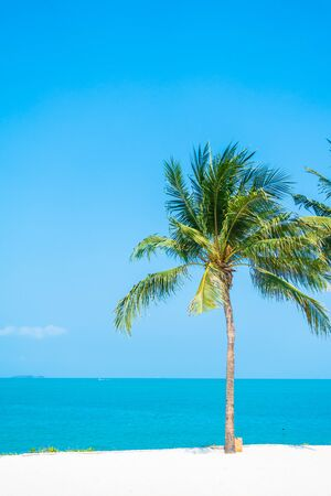 Photo pour Beautiful tropical nature of beach sea ocean bay around coconut palm tree for leisure vacation - image libre de droit