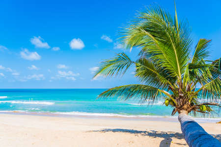 Foto de Beautiful tropical beach sea ocean with coconut palm tree around white cloud blue sky for vacation travel background - Imagen libre de derechos