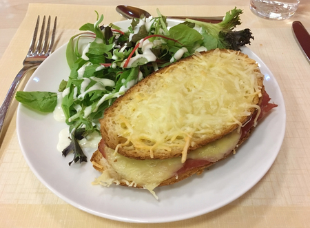 Photo for fresh sandwich with cheese and salad - Royalty Free Image