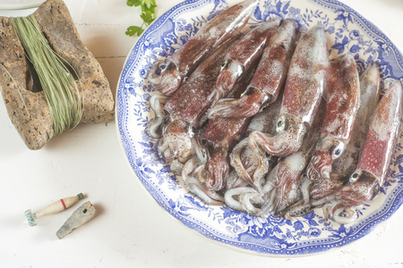 Fresh cuttlefish recently in the Bay of Santona, Spain, in an old tray and gear