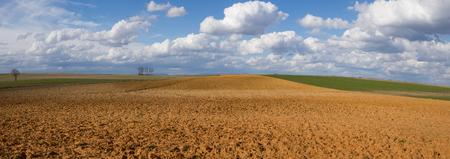 Landscape with fallow land recently plowed and cereal crops. A sunny day with cottony clouds - Paisaje con tierras en barbecho aradas recientemente  y cultivos de cereal. Un día soleado con nubes algodonosas ///terreno, agricultura,  tierra, campos, pano