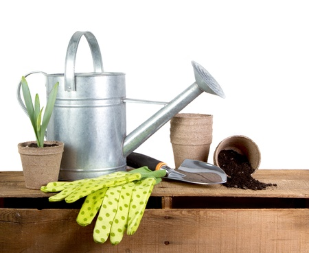 Assorted gardening tools isolated on a white background
