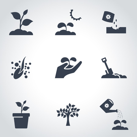 Illustration for Vector black growing icon set. Growing Icon Object, Growing Icon Picture, Growing Icon Image - stock vector - Royalty Free Image