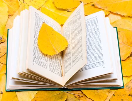 Open book on yellow fall leafs