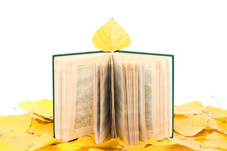 Open book on autumn leafs background