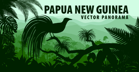 Illustration pour vector panorama of Papua New Guinea with lesser bird of paradise - image libre de droit