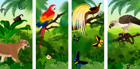 Illustration pour Jungle rainforest vertical baner with Lesser Bird of Paradisea, puma cougar, parrot red scarlet macaw arae, hummingbirds, birdwing butterflies and philippine Eagle with monkey - image libre de droit