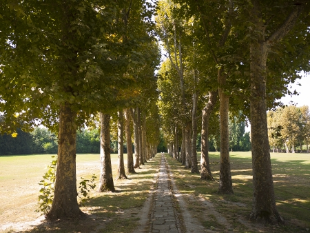 Gardens of the Villa Foscari Malcontenta between Padua and Venice
