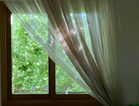 Photo pour Sunny spring outside the window. Window in the house on a background of green plants. The sun's rays penetrate the house through the windows. - image libre de droit