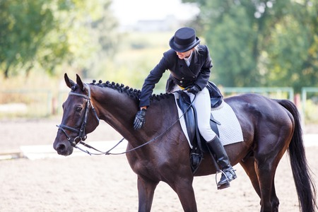 Photo pour Young elegant rider woman patting her bay horse - image libre de droit