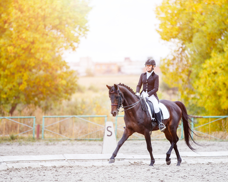 Photo pour Equestrian sport event at fall with copy space. Young woman riding bay horse on dressage advanced test - image libre de droit