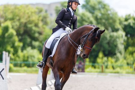 Photo for Young female horse rider on equestrian sport event - Royalty Free Image