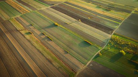Photo pour Crop field in autumn. On top. - image libre de droit