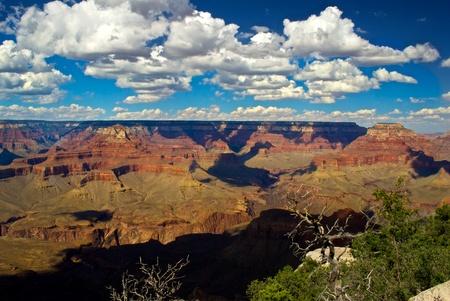 Grand Canyon Yaki point