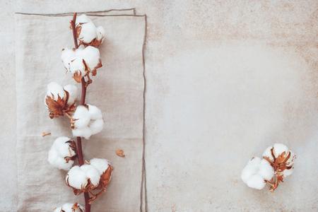 Foto für Beautiful white cotton flower branch on rustic concrete background.  Top view, blank space - Lizenzfreies Bild