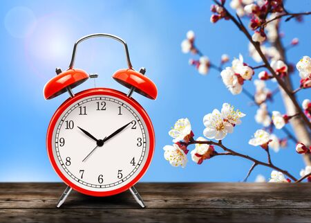 Photo pour Vintage red alarm clock on wooden table or bench in the spring season on the background of a blooming fruit tree background. Return to summertime. Switch to daylight saving time. - image libre de droit