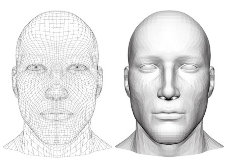 Illustration for Realistic male head. Polygonal skin. Isolated. 3D. EPS 8. Vector illustration. - Royalty Free Image