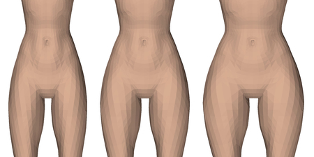 Ilustración de Vector illustration with three types of female waist and hips. From slender to fluffy thighs. Sequence of hips thickening. 3D. - Imagen libre de derechos