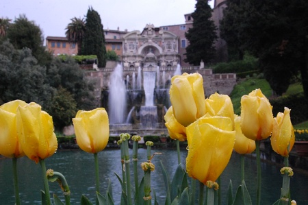 Tivoli s gardens