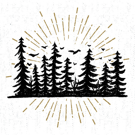 Illustration pour Hand drawn icon with a textured spruce trees vector illustration. - image libre de droit