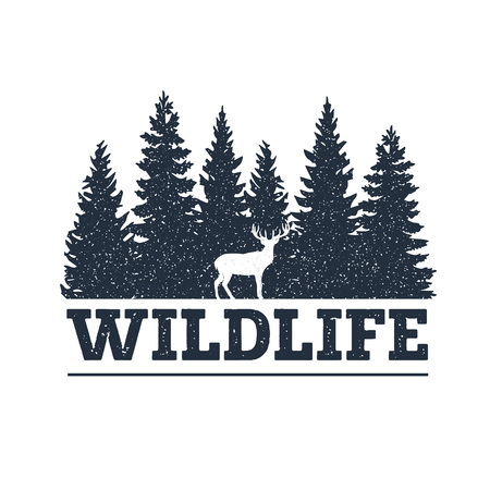 Illustration pour Hand drawn inspirational label with pine trees and deer textured vector illustrations and Wildlife lettering. - image libre de droit