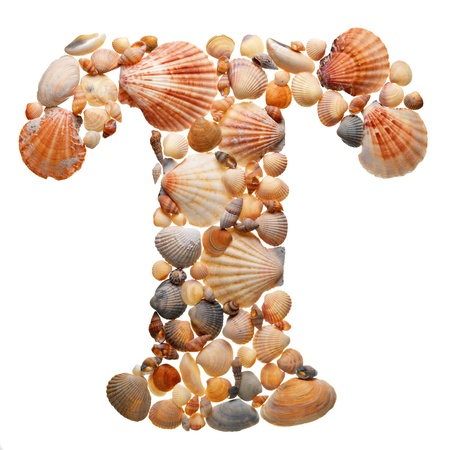 summer alphabet made of seashells during travel