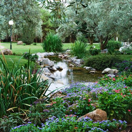 Spring flowers in the Asian garden with a pond