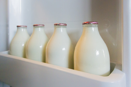 Landscape image of four glass milk bottles in a fridge door shelf