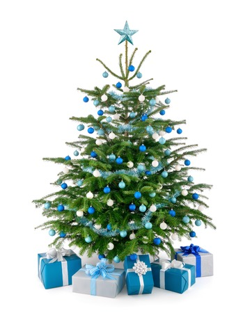 Stylish studio shot of a beautiful lush Christmas tree decorated in blue and silver