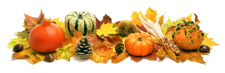 Natural autumn decoration arranged with dry leaves, ornamental pumpkins, cones and more, studio isolated on white, wide formatの写真素材