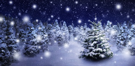 Photo pour Outdoor night shot of a nice fir tree in thick snow, for the perfect Christmas mood - image libre de droit