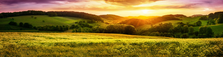 Photo pour Panoramic sunset over a vast blossoming meadow landscape, with hills on the horizon and colorful sky - image libre de droit