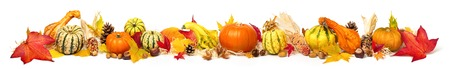 Photo for Colorful autumn decoration with leaves, pumpkins and more, isolated and extra wide format as banner or border - Royalty Free Image
