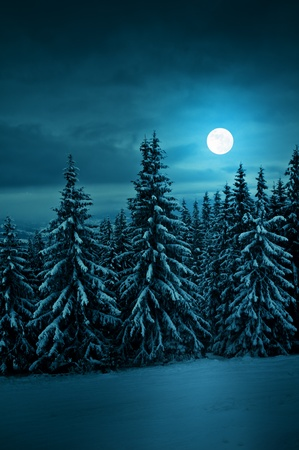 tranquil blue night with moon