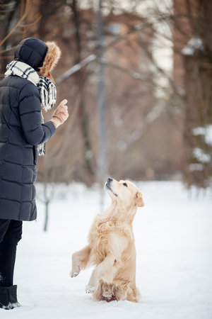 Photo of young woman in black jacket training dog in snowy parkの写真素材