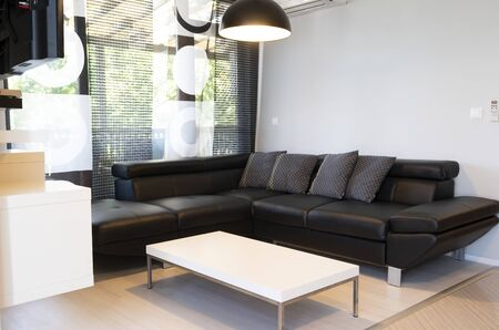 Photo pour Modern interior of living room with comfortable black leather sofa. - image libre de droit