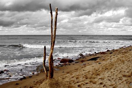 land art wooden sticks on the Baltic Sea beach