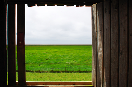 View of the salt marshes of the North Sea near Westerhever