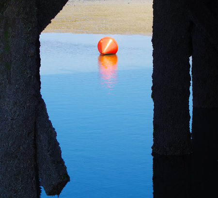 red buoy at low tide on the North Sea