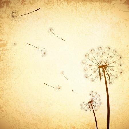 Illustration pour Illustration of Vintage Grunge Dandelion Background - image libre de droit
