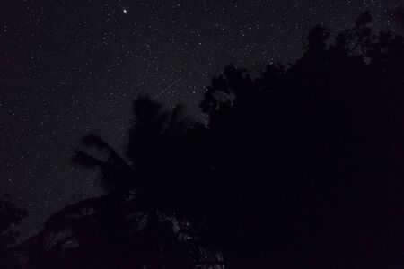 Photo for Two falling stars cross each other in nigh sky over the jungle in Banda islands, Maluku, eastern Indonesia - Royalty Free Image