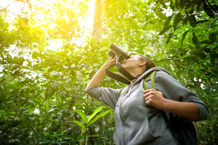Tourist looking through binoculars considers wild birds in the jungle.Bird watching tours