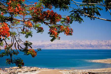 Photo pour View of the Dead Sea from Israel - image libre de droit
