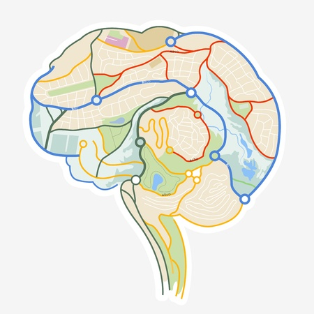 Brain Map  An illustration of a human brain made up from a map  illustration