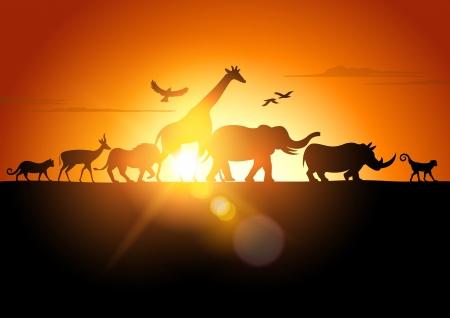 Sunset Safari - Wildlife silhouetted against a sunset - vector illustration.