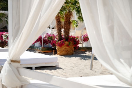 Area of a beach for comfortable rest with flowers and chaise longue