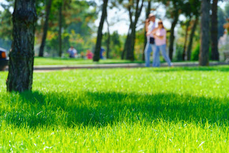 Foto de city park on a summer day, green lawns with grass and trees, paths and benches, people walking and children playing, bright sunlight and shadows - Imagen libre de derechos
