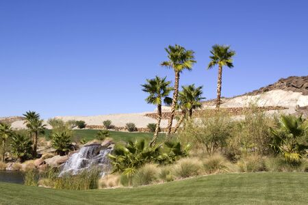Waterfall and palm trees in desert oasis