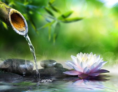 zen garden with massage stones and waterlily