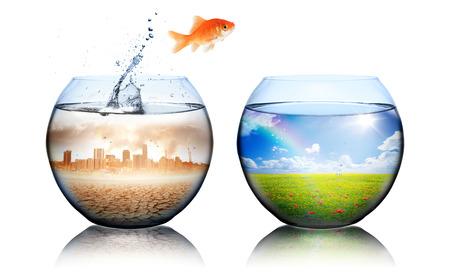 Foto de Global Warming Concept  goldfish jump from pollution to green - Imagen libre de derechos